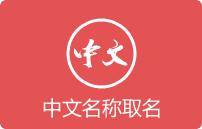 企业/产品中文名称取名